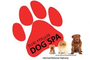 Dok Hayop Animal Clinic & Dog Spa